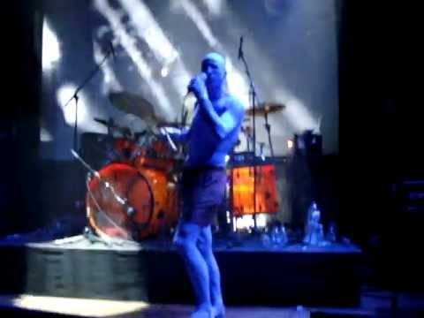 The Perfect Tool - Prison Sex (HQ) (Live @ Atak Enschede, 24-01-2010) ...