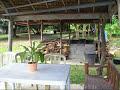 Mango & Hog Farm-Cebu, Philippines