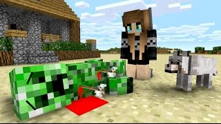 getlinkyoutube.com-Creeper Life - Minecraft Animation