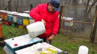 Hrănirea stupilor iarna, ianuarie 2015