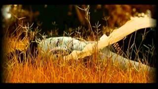 getlinkyoutube.com-Tujhe Bhoolna To Chaha Lekin Bhula Na Paye [Full Song] Bewafa Sanam- Hits Of Ataulla Khan