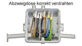 getlinkyoutube.com-Abzweigdose installieren und verdrahten