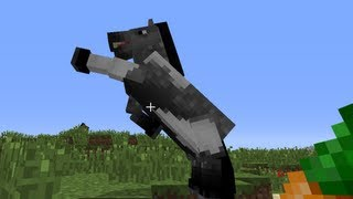 getlinkyoutube.com-Minecraft: how to tame a horse - (minecraft horse)