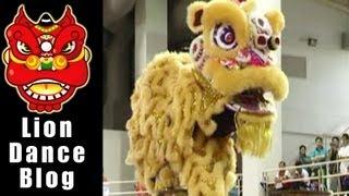 getlinkyoutube.com-2008 Lion Dance Competition -  Big Ma Shaba Southern schools Rui troupes