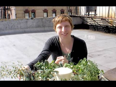 Hydroponic Herb Garden – CRAFT Video