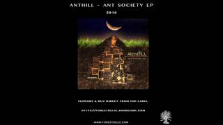 getlinkyoutube.com-AntHill - Ant Society