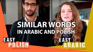 getlinkyoutube.com-Super Easy Polish 9 / Super Easy Arabic 1 - Similar words!