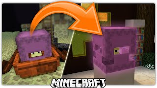 Minecraft   How To Get a Shulker Out of The End (Tutorial)