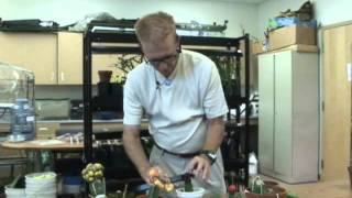 getlinkyoutube.com-How to Graft Cactus