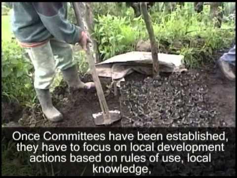 Managing the Tacana Volcano Watershed