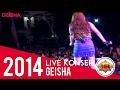 Geisha - Selalu Salah | Reggae Version Live Konser Sragen jawa tengah 7 Mei 2014