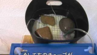 getlinkyoutube.com-水作エイトを使って外部ろ過器を作ってみた[アクアリウム]