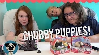 getlinkyoutube.com-Chubby Puppies & Birthday Gifts with Mommy & Gracie!!!