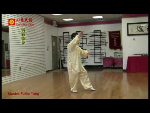 Taiji Chen Style 83 Form by YANG Fukui -- Part I