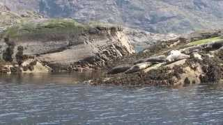 getlinkyoutube.com-Isle of Skye, Elgol Harbour, Loch Coruisk
