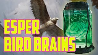 Bird Brains (Esper Bird Brain, Modern) – Stream Highlights