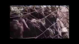 getlinkyoutube.com-Rare WW2 Pacific War Footage *Graphic*