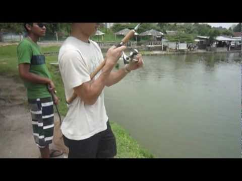 Kolam Pancing Damansara Perdana - The Weekend Fishing Warrior