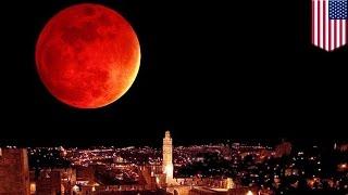 getlinkyoutube.com-「スーパームーン」と皆既月食、33年ぶり同時出現
