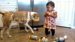 getlinkyoutube.com-Vicious Pit Bull attacks baby girl
