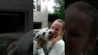 getlinkyoutube.com-Dog passes out from overwhelming joy | #CaseyTheDog
