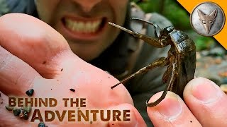 getlinkyoutube.com-TOE-BITER! Giant Water Bug!