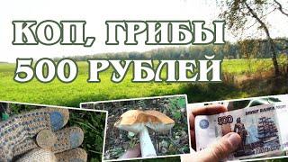 getlinkyoutube.com-КОП, ГРИБЫ и 500 РУБЛЕЙ / Дневники Кладоискателя