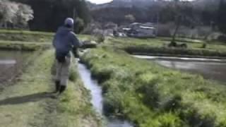 へち際のフライフィッシング(栃木の用水堀その2)