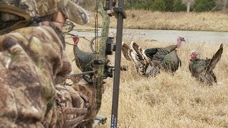 getlinkyoutube.com-Bowhunting Turkeys: Gobbler at 6 Steps, No Pop-Up Blind