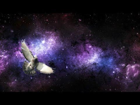 Early Radio Astronomy and the Pigeon Problem - Professor Ian Morison