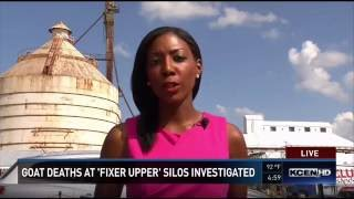 getlinkyoutube.com-Goats Killed At Magnolia Silos: Site of HGTV Fixer Upper