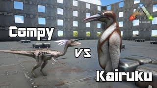 getlinkyoutube.com-ARK: Survival Evolved - Compy vs Kairuku - Dino Battle