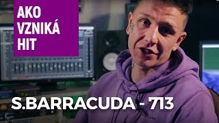 S.Barracuda - 713 (Ako vzniká hit)