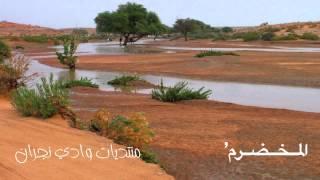 getlinkyoutube.com-يازين سلم علينا  كل ما مريت) ـ أبو عسكر   YouTube