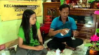 getlinkyoutube.com-Cinta Bumi Kreasi Bunga Cantik Dari Botol Plastik Bekas - NET5