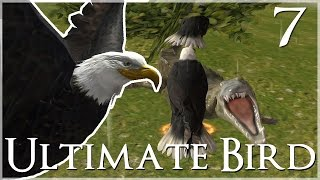 getlinkyoutube.com-Facing Down the Jaws of Death!! • Ultimate Bird Simulator - Episode #7