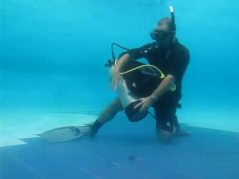 Scuba Diving Skill Demonstration for IDC and/or Divemaster -rw3WEQDUkmc