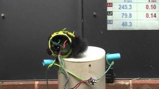 getlinkyoutube.com-Variac vs Furby