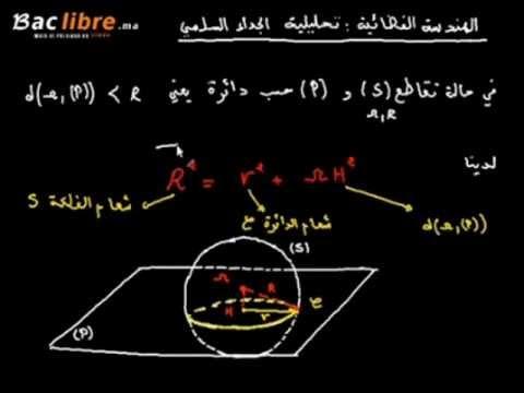 هندسة فضئية - تقاطع فلكة و مستوى حسب دائرة
