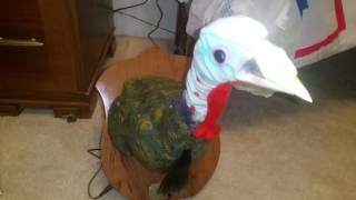 "Gemmy Animated ""Lucky Tom The Talking Singing Turkey"""