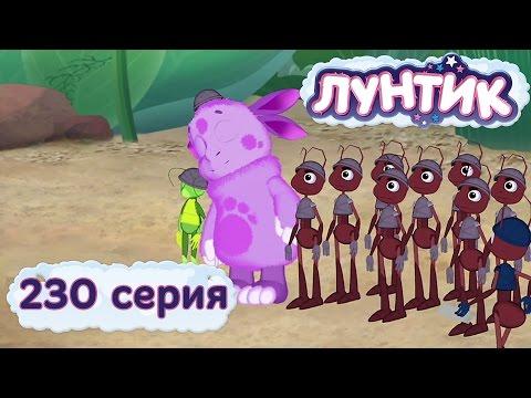 230 серия. Муравьи