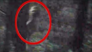 getlinkyoutube.com-Scariest Alien Video Ever (18+)