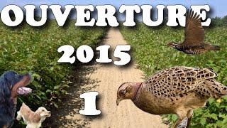 getlinkyoutube.com-OUVERTURE CHASSE 2015 #1 CALIBRE 410 PHEASANT HUNTING/CACCIA SELVAGGINA/CAZA MENOR/ОХОТА НА ФАЗАНА