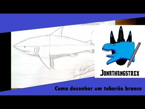 Como desenhar um tubarão - aula de desenho realista e hq comics - Jonathangstrex Desenhos - video 1