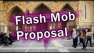 Flash Mob Proposal (2018) -