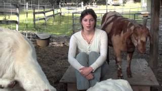 getlinkyoutube.com-Happy Hobbit: Goat Basics - Episode 11