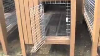 getlinkyoutube.com-Easy Kennel: Raised Dog Kennel Design