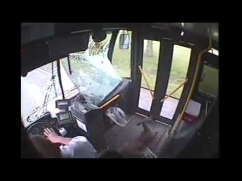 Deer crashes into bus in Johnstown - Deer Fare - 5/14/13