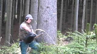 getlinkyoutube.com-tezba dreva Lada Mikl 346 xp