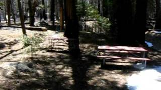 getlinkyoutube.com-Ranger Darrin says please preserve the Preservation Pole.